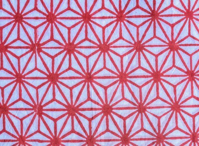 Red And White Floral Web  Block Print Fabric